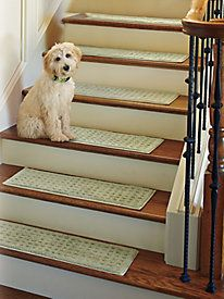 Beautiful Vista Rug   Nonslip Indoor Rug   Stair Treads | Solutions | Places + Spaces  | Pinterest | Indoor Rugs, Stair Treads And Indoor