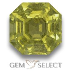 GemSelect features this natural untreated Apatite from Madagascar. This Green Apatite weighs 6.3ct and measures 9.9 x 9.8mm in size. More Asscher Cut Apatite is available on gemselect.com #birthstones #healing #jewelrystone #loosegemstones #buygems #gemstonelover #naturalgemstone #coloredgemstones #gemstones #gem #gems #gemselect #sale #shopping #gemshopping #naturalapatite #apatite #greenapatite #octagongem #octagongems #greengem #green