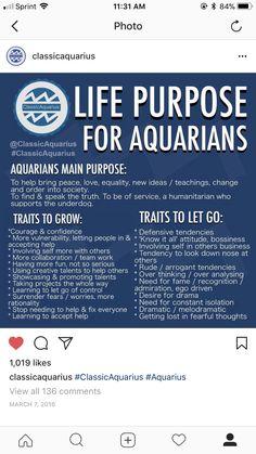Aquarius Pisces Cusp, Aquarius Traits, Aquarius Quotes, Zodiac Signs Aquarius, Age Of Aquarius, Astrology Signs, January 26 Zodiac, Aquarius Birth Dates, Aquarius Aesthetic