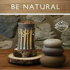 New fall/winter scentsy warmers order your from my website www.scentsbysarav.scentsy.ca