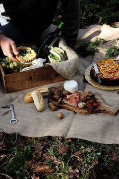 A charming cheese board picnic (picture)