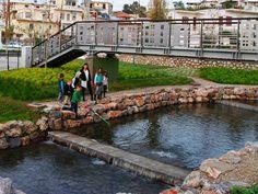 Πλατεία ΠηγώνΣκάλα, Λακωνία2009 - 2015ΔημόσιοΟλοκληρώθηκε5600 τ.μ.Η Utopia landscapes σχεδίασε το σύνολο των χώρων της Πλατείας Πηγών, της κεντρικής πλατείας της πόλης της Σκάλας στη Λακωνία. Στο σημείο αναβλύζουν πηγές, όπως υποδηλώνει και το τοπωνύμιο. Η περιοχή λοιπόν, παρ' ότι αστική, αποτελεί ένα πολύ ευαίσθητο φυσικό υδάτινο οικοσύστημα.Η βασική ιδέα σχεδιασμού επικεντρώθηκε στην προστασία και στην ανάδειξη του φυσικού οικοσυστήματος, μετατρέποντας το ταυτόχρονα σε χώρο συνάθροισης Central Square, Urban Design, Fresh Water, Greece, Landscape, Nature, Delicate, Spaces, Group