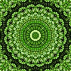 We offer different sacred tools, local events, retreats and online coaching. Go Green, Green Colors, Green Theme, Green Party, Spirograph, Hippie Art, World Of Color, Mandala Art, Fractal Art