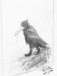 By Donald Bruce Edward Wilson