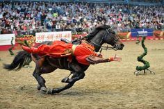 """Excellent """"tow horses for shows"""" info is available on our website. Check it out and you wont be sorry you did. Two Horses, Black Horses, Olympia Horse Show, Horse Trailers For Sale, Buy A Horse, Horse Face, Animals Of The World, Equestrian, London"""