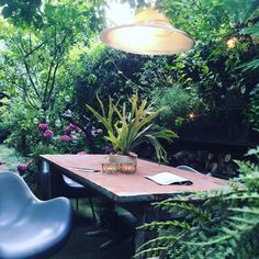working outside in my garden kinda day, abigail ahern Eco Garden, Garden Works, Dream Garden, Garden Art, Garden Ideas, Little Gardens, Small Gardens, Outdoor Gardens, Small Outdoor Spaces