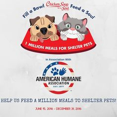 Chicken Soup for the Soul will provide up to 1 million meals by donating one pound of pet food to shelter pets for every Chicken Soup for the Soul pet food item purchased by participating retailers from June 15, 2016 – December 31, 2016.  http://chickensouppets.com/fabfas