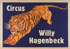 Tiger - Circus Willy Hagenbeck