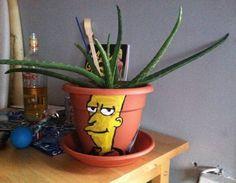 Best Cactus Pot Ever