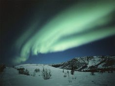 Northern Lights, the natural light displays in the sky, usually observed at night, particularly in the polar regions.