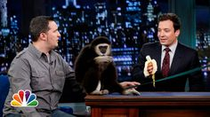 Jeff Musial: Otters, Gibbon and Water Buffalo, Part 1 (Late Night with J...