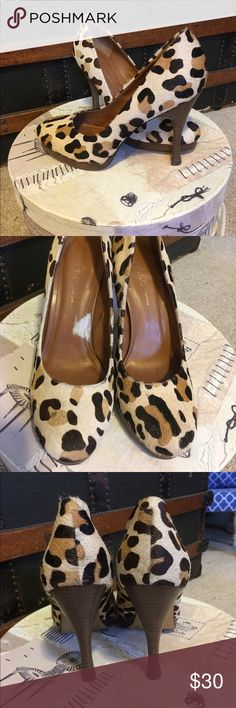 "BCBG Leopard print pony hair heels Ultra adorbs! One of my favs but they are too small for me after having babies. Only worn a handful of times. Furry pony hair covered leather, BCBG brand, size 6.5. 3.5"" heel with 1/2"" toe platform. Very cushy and comfy shoe bed. Stacked wood heel. Nice condition, one very tiny spot on the toe of one shoe where the hair is rubbed. See pics, not really noticeable though. White spot inside shoe is where the paper price tag was. Any Q's feel free to ask. BCBG…"