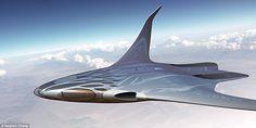 Sleek! Designer Stephen Chang predicted the development of an organic aircraft carrying 250-300 passengers through the skies