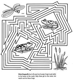 dragonfly and frog maze Maze Puzzles, Logic Puzzles, Puzzles For Kids, Literacy Games, Kindergarten Activities, Maze Worksheet, Worksheets, Coloring Books, Coloring Pages