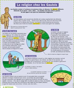 Religion des Gaulois Ap French, French History, French Class, French Lessons, Learn French, French Teacher, Teaching French, Ap Literature, French Education
