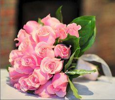 Rosas!!!!!!!!!!!!!