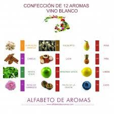 AROMAS DE VINOS CHILENOS