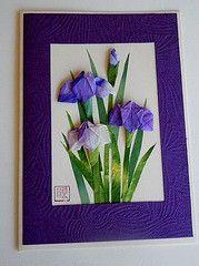Paper Greeting Card 3 Photos   Origami Washi Iris   073