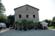 Palmbomenkwekerij en minicamping - Montefiore dell Aso - Marche Roose Consultancy