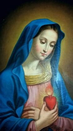 Mother Mary Tattoos, Hail Holy Queen, I Love You Mother, Jesus E Maria, Queen Of Heaven, Mama Mary, Holy Mary, Blessed Virgin Mary, Catholic Art