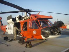 Multinational Force and Observer's UH-60 (Egyptian border)