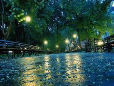 Lights - Paris