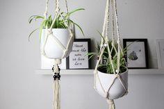 Ich liebe Pflanzen, ich finde eine Wohnung, die mit Pflanzen geschmückt ist, ist gleich viel einladender und bequemer. Pflanzen zaubern in jede Wohnung das gewisse Etwas und sorgen auch für bessere Luft. Es gibt eigentlich nur Vorteile, aber wie platziertman…