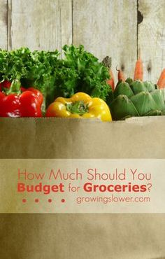 How Much Should You Budget for Groceries? Check out this grocery spending guideline to see how much you should be spending (and how much you could be saving) on groceries per month. Includes a chart to help you set your food spending based on family size, ages, and genders. Whether you're budgeting for one person or 11 people, this post will show you whether your budget is on track or if you could be saving more money on groceries.