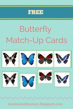 Butterfly Match Up Cards   Montessori Nature Blog