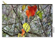 Fall Carry-all Pouch featuring the photograph Fall Leaves by Cynthia Guinn