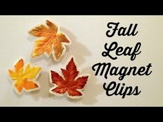 Turn fake fall leaves from the dollar store into magnetic fridge clips!