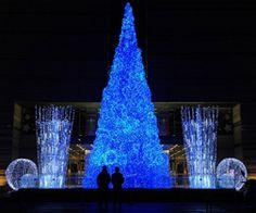 Trang trí cây thông Noel màu sắc lung linh