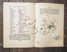 """Romany Remedies and Recipes was published in 1936. It was written by Gipsy Petulengro, granddaughter of 'the old gipsy tinker Petulengro immortalized in The Romany Rye"""" and daughter of a Romanian horse-dealer and a Rumanian Zingari herbalist. All of the recipes are measured in terms of wine glasses, which is just one of my favorite things about this book."""
