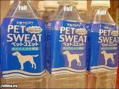 photos of funny translations - Google Search