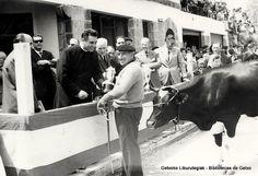 Concurso de ganado vacuno en Andra Mari, 15 de mayo de 1961. Entrega de trofeos (Colección Archivo municipal) (ref. 00617)