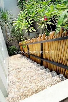 Natural with Bamboo Fences