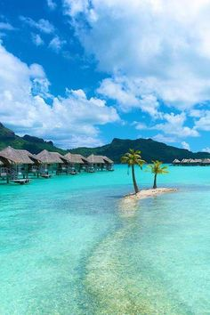 Sandbar in the Bora Bora tropical lagoon with two palm trees.
