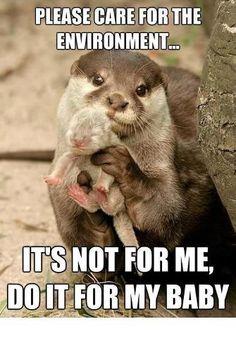 """""""Por favor, cuide do meio ambiente ...  Não é por mim, mas por meu bebe"""""""