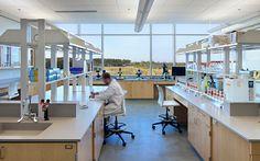 Instituto de Estudios Costeros UNC / Clark Nexsen