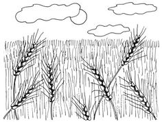 "TLC ""How to Draw Wheat Fields in 4 Steps"" Goes well with Plum Creek week 1"
