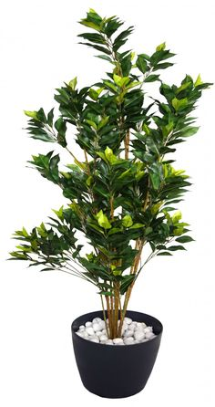 150 Cm Tall Decorative Artificial Ficus Plant Without Pot Trees Online Plants