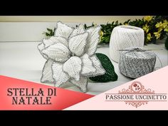 TUTORIAL: Stella di Natale all'Uncinetto - YouTube Poinsettia, Crochet Flowers, Cactus Plants, Stella, Free Pattern, Place Cards, Place Card Holders, Youtube, Patterns