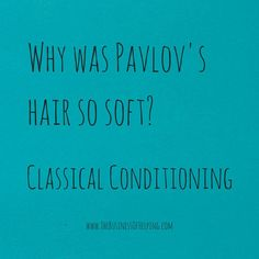 Why was Pavlov's hair so soft? Classical Conditioning. Psychology ...
