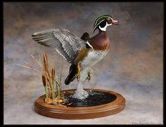 Duck mount