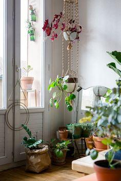 Judith aposta no jardim vertical para o seu lar. Além de otimizar o espaço, também é uma maneira de proteger as plantas dos seus gatinhos (Foto: Lina Skukauske | Urban Jungle Bloggers)