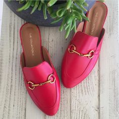She collection Gucci, Shoes, Collection, Fashion, Moda, Zapatos, Shoes Outlet, La Mode, Fasion