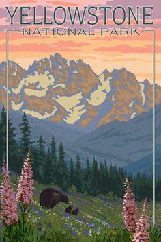 Spring Flowers - Yellowstone National Park - Lantern Press Poster
