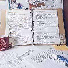 #motivationforstudy
