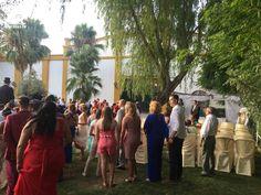 Algunos momentos de la boda de Fran y Lola Lily Pulitzer, Dolores Park, Dresses, Fashion, Wedding Moments, Boyfriends, Vestidos, Moda, Fashion Styles