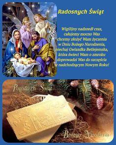 Hosta Flower, Christmas Tree, Animation, Humor, Flowers, Poster, Holidays, Saints, Holy Spirit